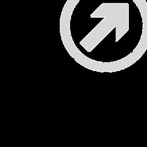 Icon Traffic Einstein1