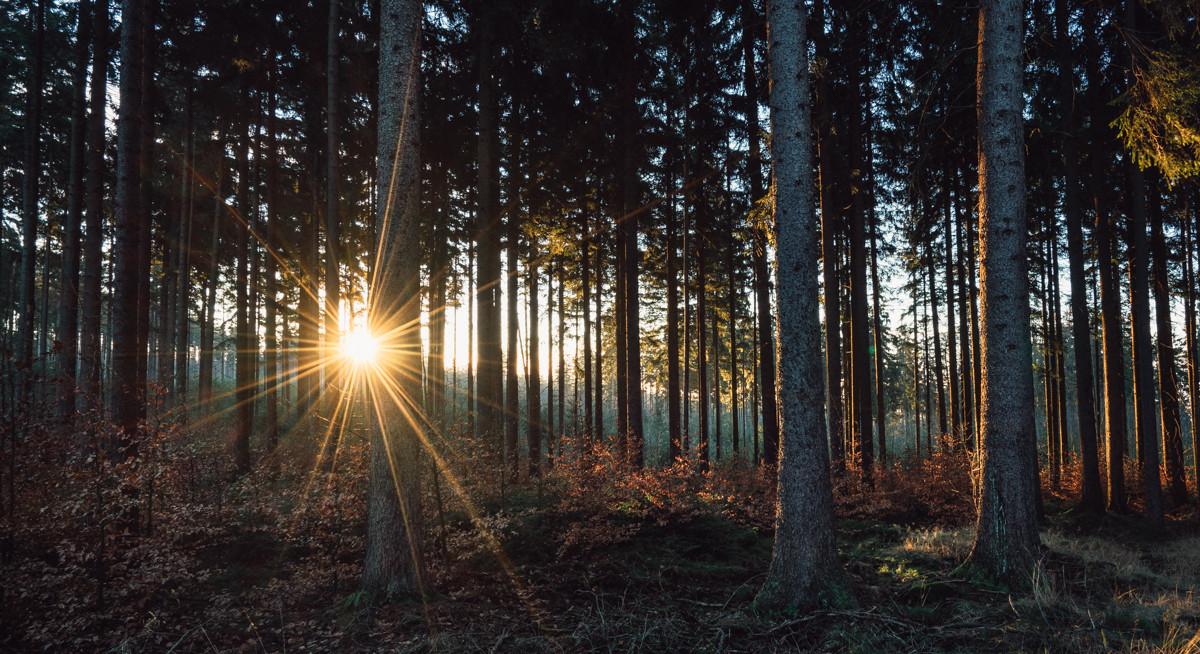 Sonnenaufgang - Mixplor - Fotoblogger, Fotografie, Mirko Fikentscher