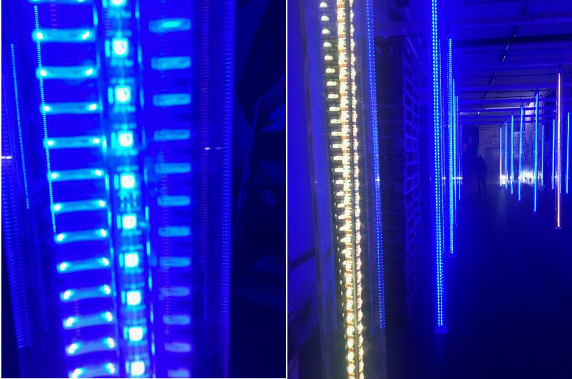 LUMA Digitale Kunst - Details