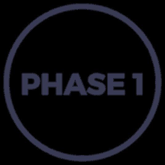 Phase 1 Startup Challenge Einstein1