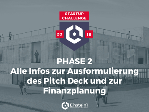 Phase 2 Startup Challenge PDF Einstein1
