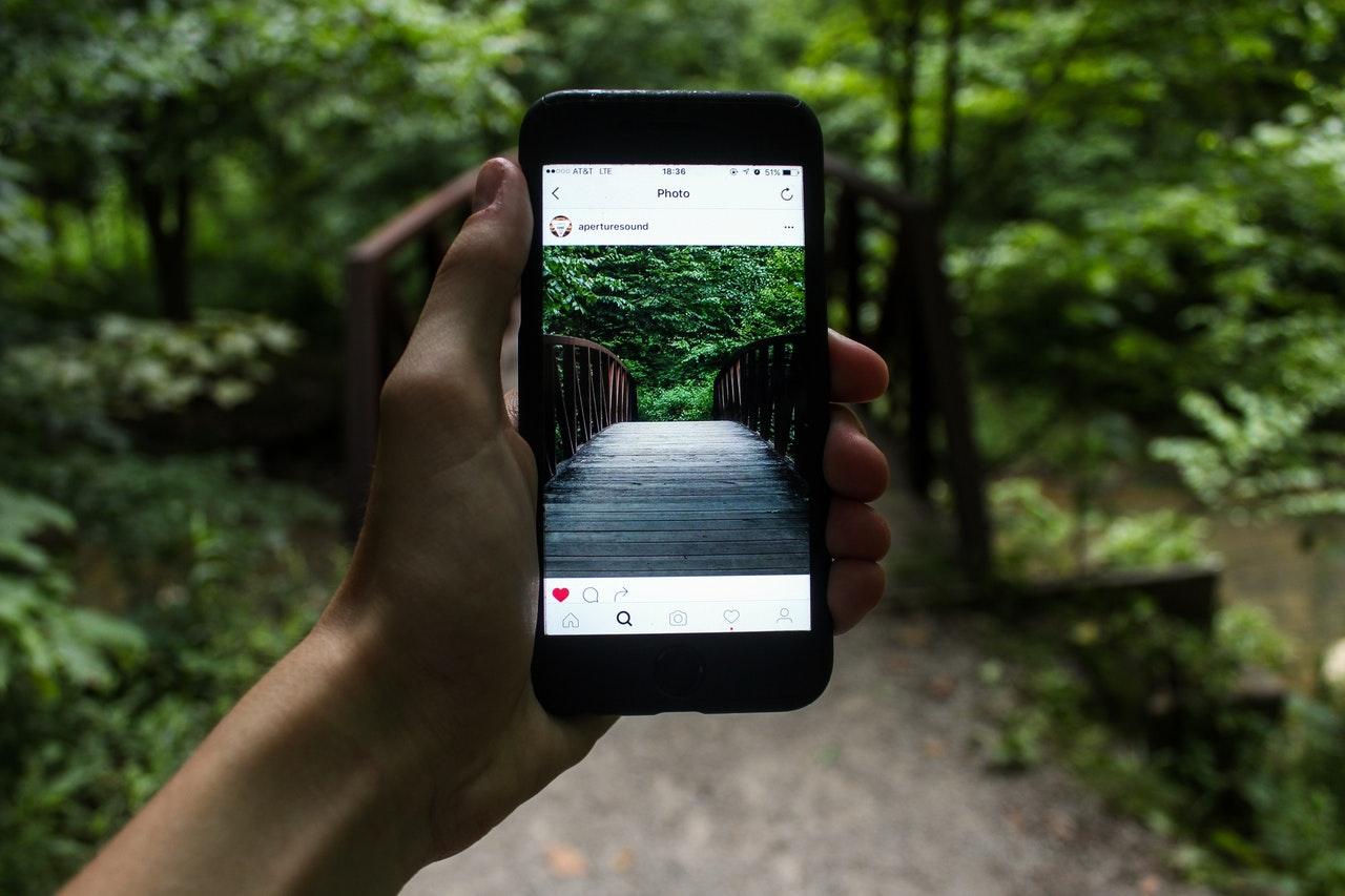 Person mit Smartphone im Wald