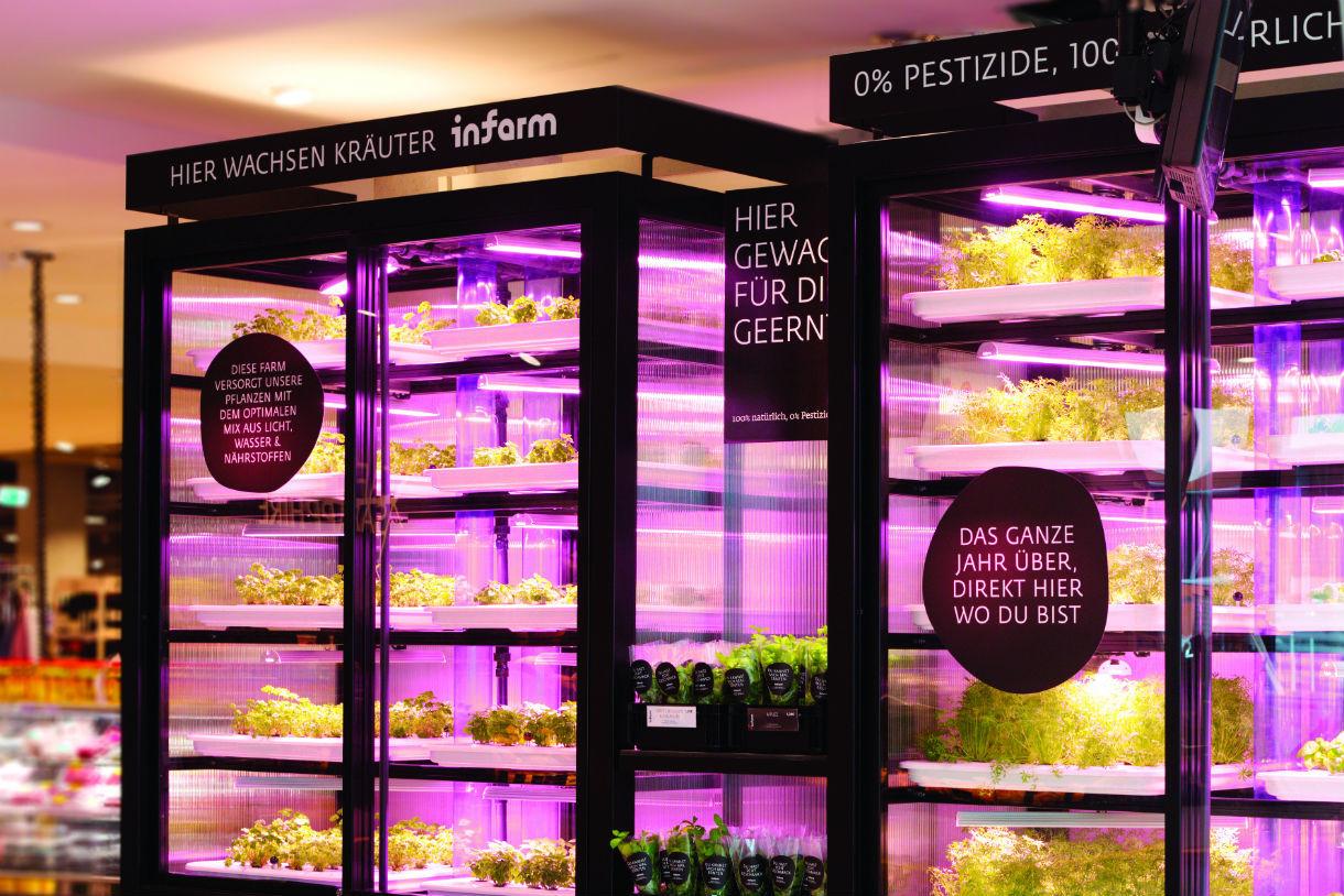 Infarm züchtet Kräuter und Gemüse direkt am Ort des Geschehens