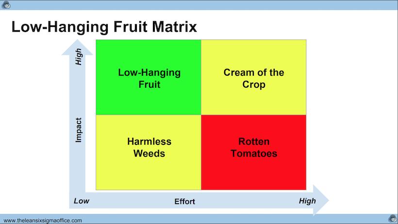 Low Hanging Fruits Matrix Einstein1
